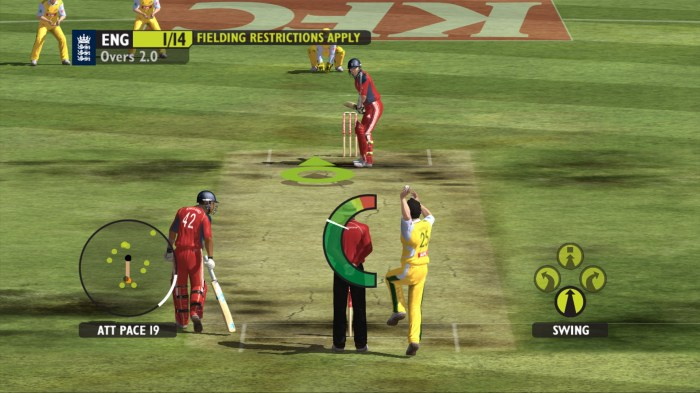 ashes_cricket_2009_screenshot_39