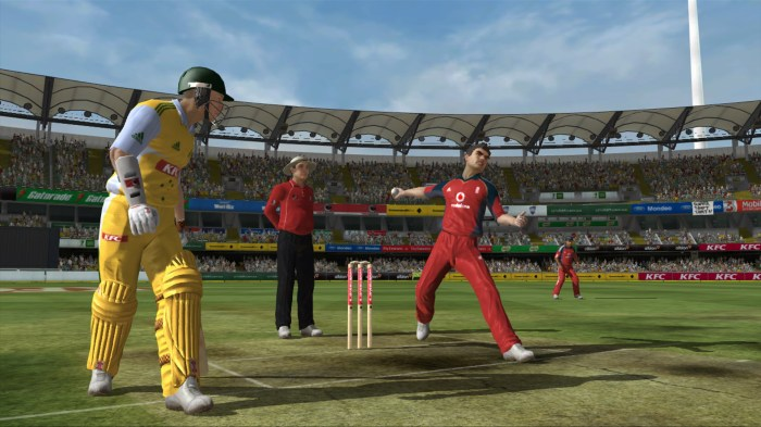 ashes_cricket_2009_screenshot_40